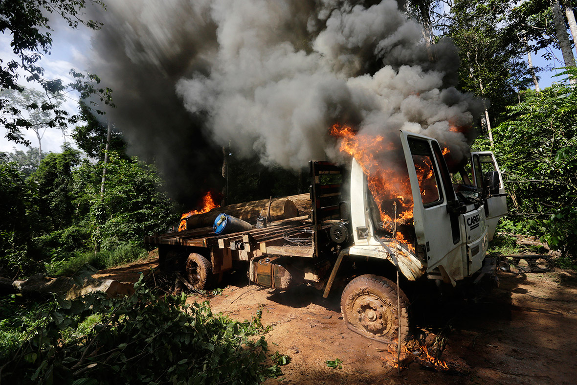 brazil loggers vehicle